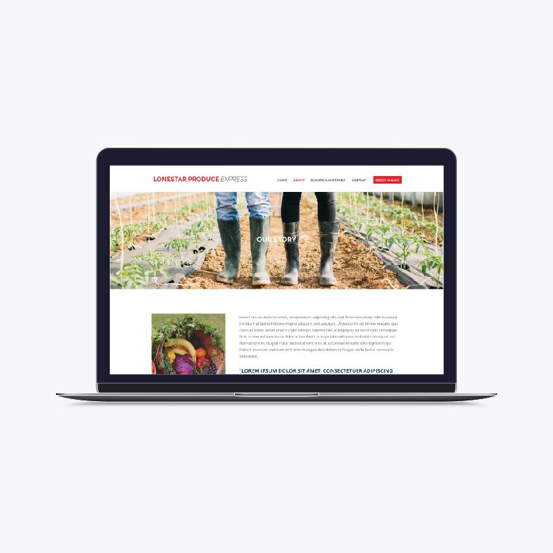 single-website-01-1